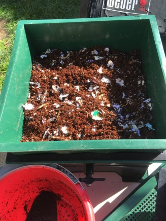 the coir mixture added to the first feeding tray